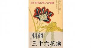 Asagao-title