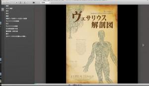 「ヴェサリウス解剖図」を単ページ表示