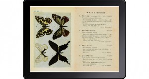 原色千種昆虫図譜-3